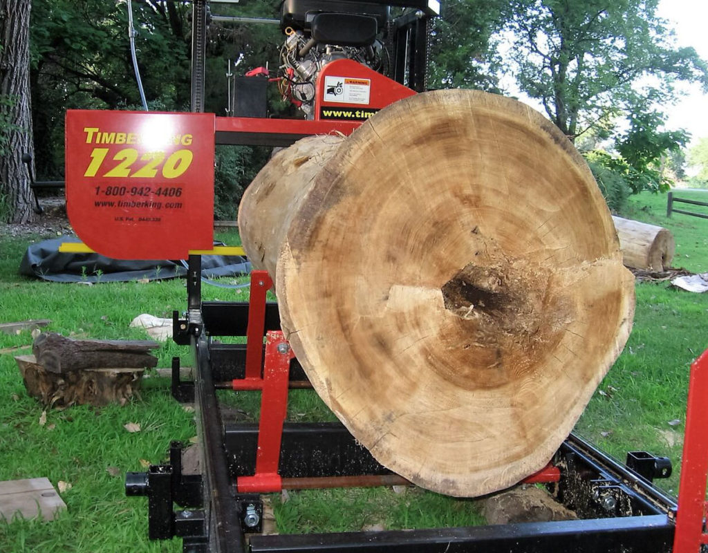 Cottonwood grows straight and tall in Jim's part of the Midwest. Jim says it's extremely strong and tough, good sawing on his TimberKing.