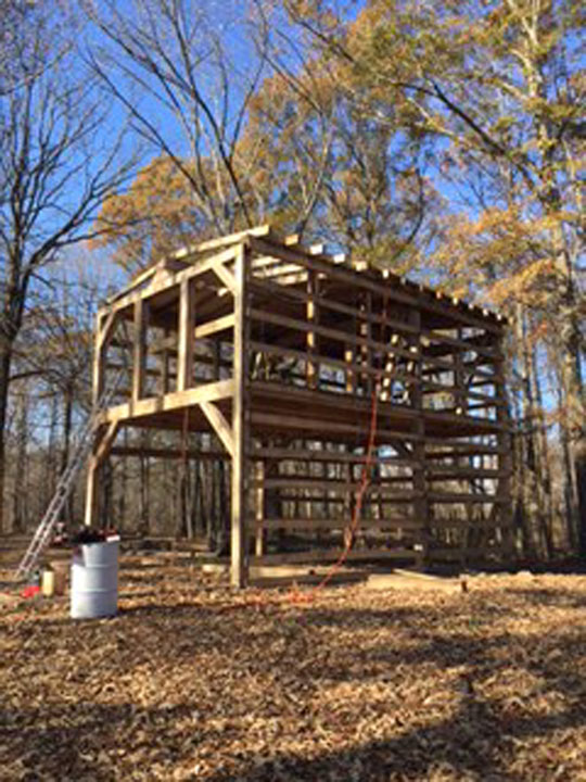 Billy's made progress -- much of the post-and-beam framework is in place.