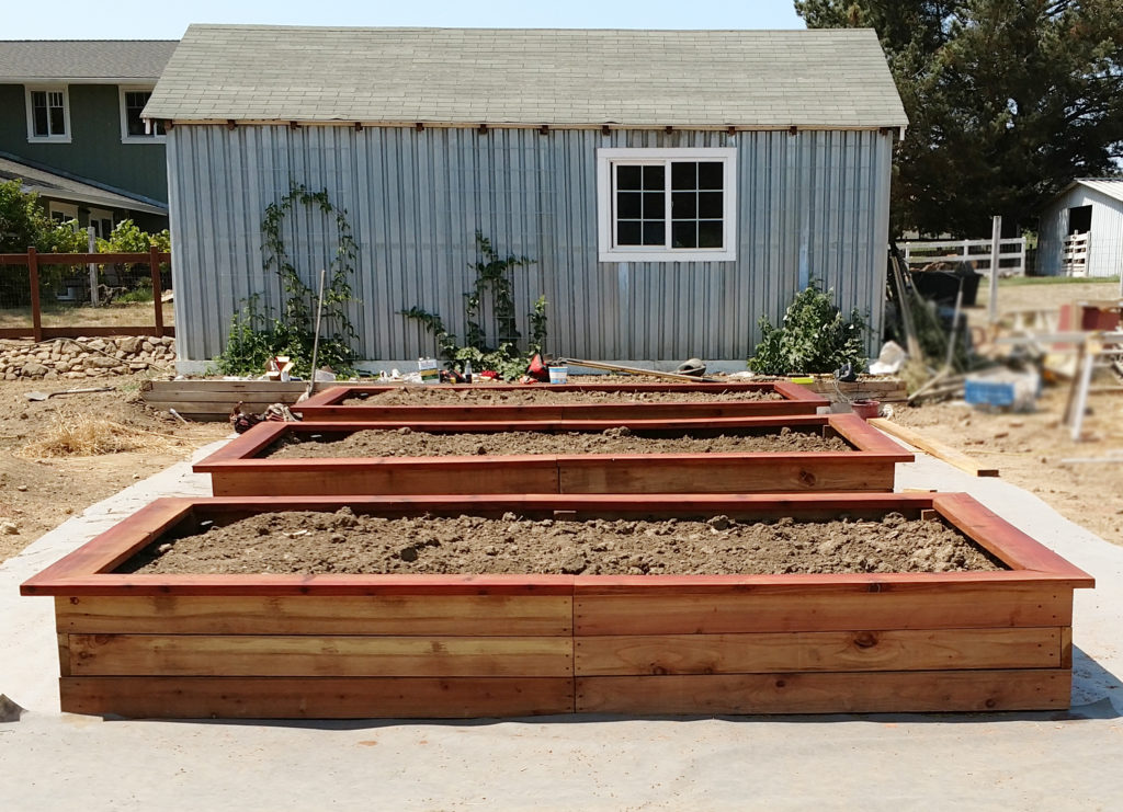 How about these handsome redwood raised garden beds? He sawed all these from wood he got for free.