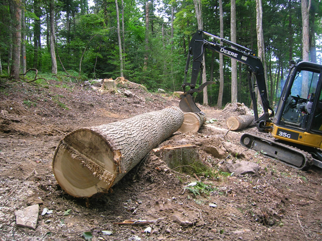 What would YOU do with an excavator and 3,500 acres of standing timber?
